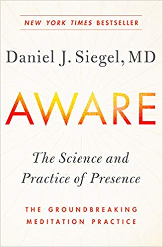 Aware Daniel J Siegel